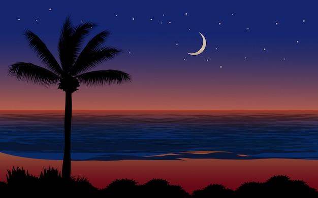 Tropische strand schöne nacht mit mond und sternen