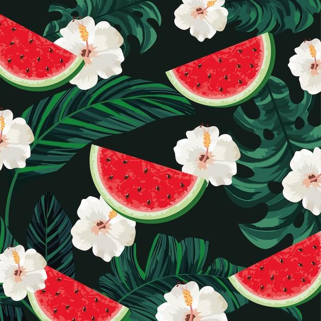 Tropische wassermelone mit blumen- und blatthintergrund