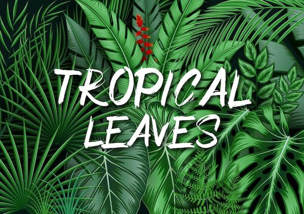 Tropischer blätterhintergrund mit dschungelpflanzen