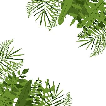 Tropischer blattquadratrahmen. hintergrund mit grüner blattpalme, monstera, nahaufnahme.