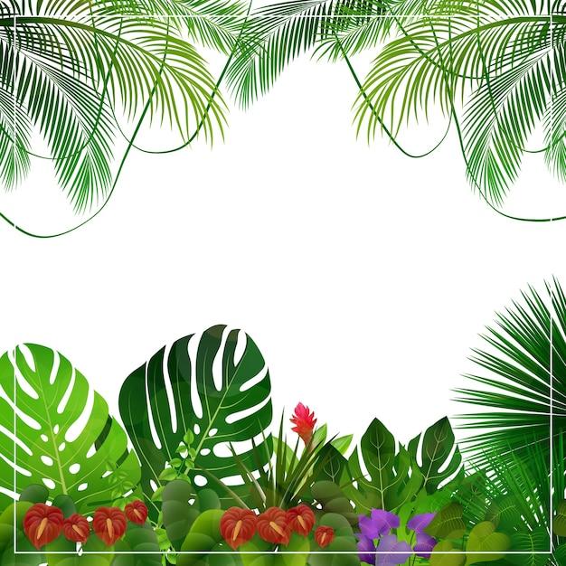 Tropischer dschungel hintergrund
