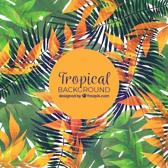 Tropischer hintergrund des aquarells mit eleganter art