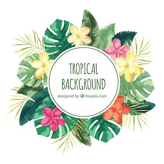 Tropischer hintergrund des aquarells mit weinleseart