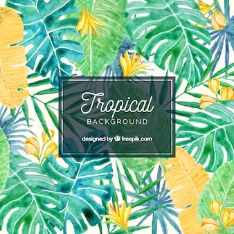 Tropischer hintergrund des reizenden aquarells