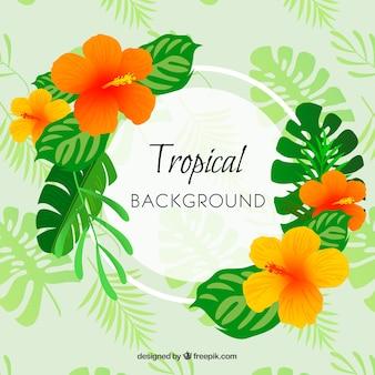 Tropischer hintergrund mit blättern und blumen