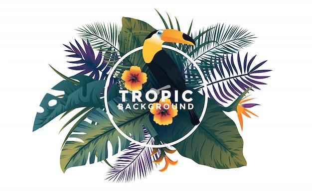 Tropischer hintergrund mit rahmen - vogel und pflanzen