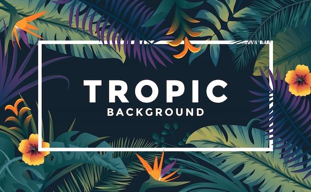 Tropischer hintergrund mit rahmen