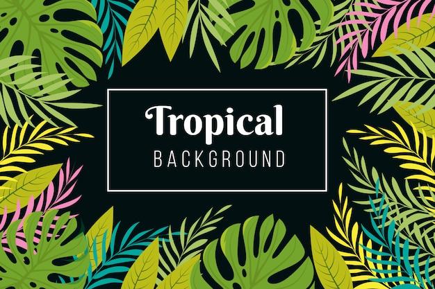 Tropischer hintergrund. regenwaldpalme verlässt rahmen. dschungelwald pflanzt exotische tapete