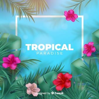Tropischer hintergrund