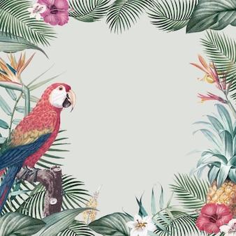 Tropischer papageienrahmen