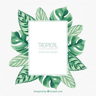 Tropischer rahmen mit blättern und vegetation