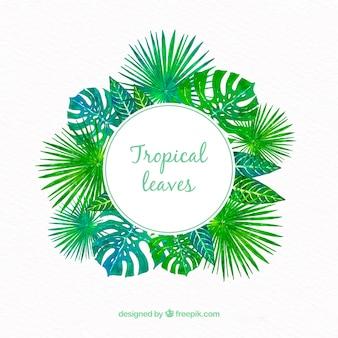 Tropischer rahmen mit verschiedenen blättern