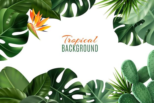 Tropischer rahmenhintergrund mit realistischen zimmerpflanzenblättern und -blumen