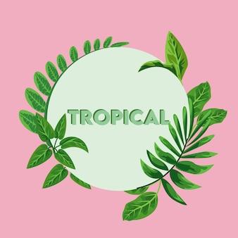 Tropischer schriftzug mit grünen blättern im kreisförmigen rahmen