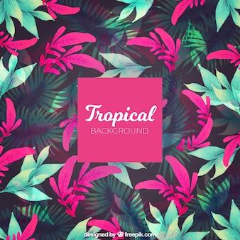 Tropischer sommerhintergrund mit den rosa und grünpflanzen