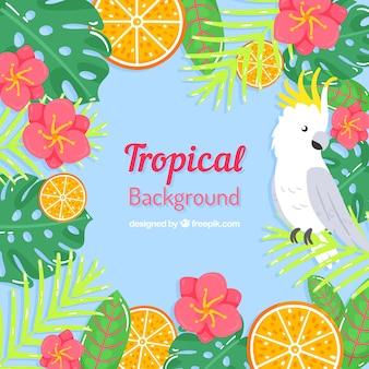 Tropischer sommerhintergrund mit vogel und blumen