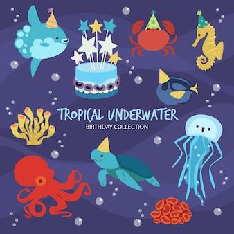 Tropischer unterwassergeburtstag