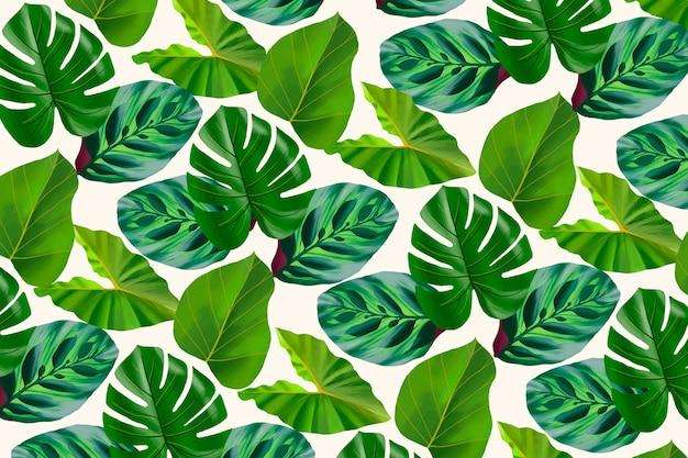Tropischer vegetationshintergrund für zoom