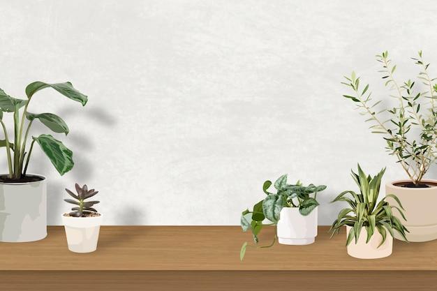 Tropischer vektor des innenpflanzenhintergrundes mit leerer wand