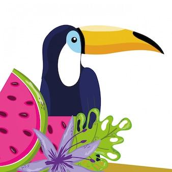 Tropischer vogel tucano cartoon