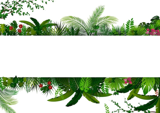 Tropischer wald auf weißer fahne des rechtecks für text