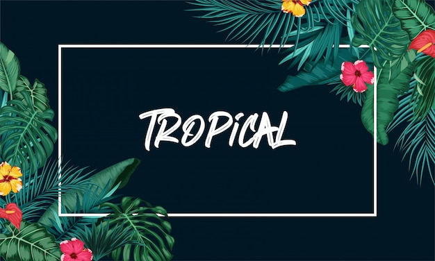 Tropischer waldhintergrund mit rundem papier