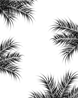 Tropisches design mit schwarzen palmblättern und pflanzen auf weißem hintergrund