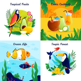 Tropisches konzept des entwurfes mit cocktail-ozeanleben-vektorillustration der früchte exotischer