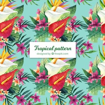 Tropisches muster des bunten aquarells