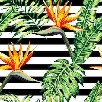 Tropisches nahtloses mit blumenmuster