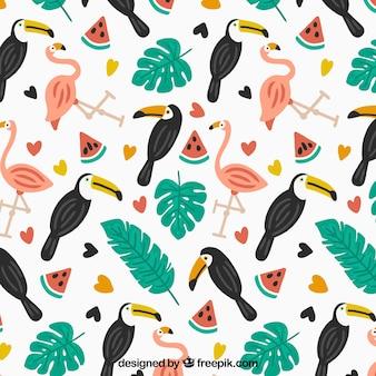 Tropisches sommermuster mit vögeln und wassermelonen