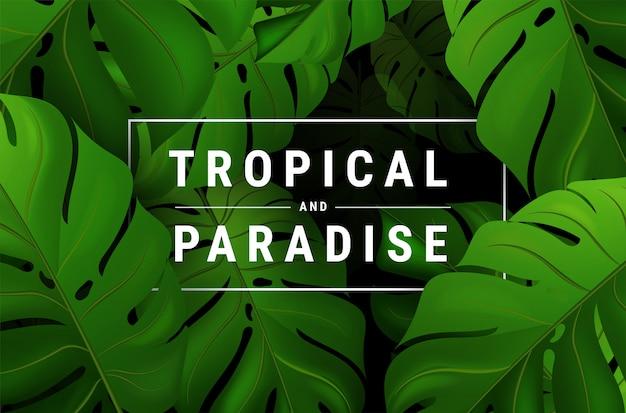 Tropisches vektordesign des sommers mit dunkelgrünen palmblättern und beschriftung