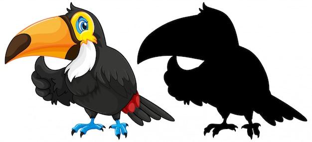 Tukan mit seiner silhouette