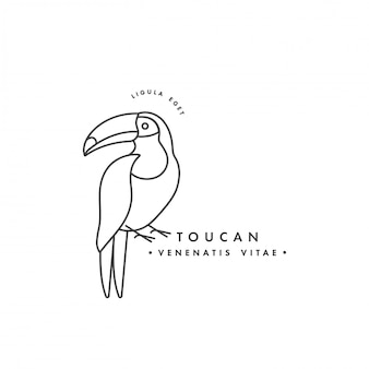 Tukanvogel des linearen logoentwurfs auf weißem hintergrund. tukanische embleme oder abzeichen.