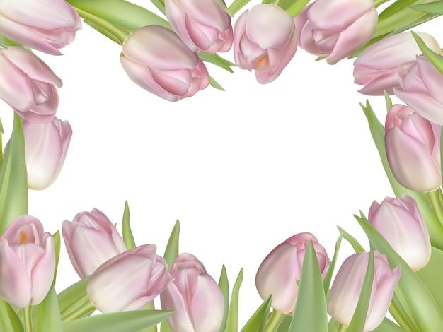 Tulpen hintergrundrahmen