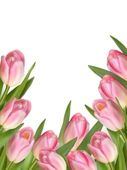 Tulpenblumen, die eine abstrakte grenze bilden, lokalisiert über weißem hintergrund mit kopienraum.