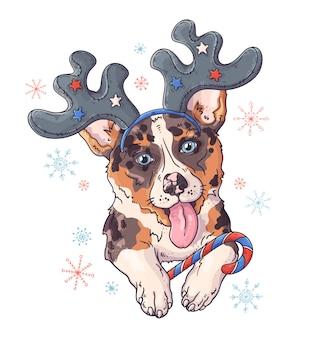 Übergeben sie gezogenes porträt des corgihundes im weihnachtszubehör