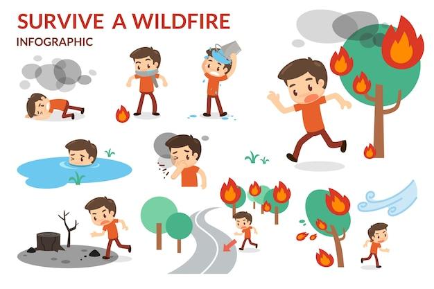 Überlebe ein wildfire