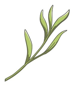 Üppiges laub der pflanze, isolierte tropische flora, wachsende blume mit blättern und blattwerk. dekorativer botanik-, garten- und blumenladen. ornament für dekor, ökologiesymbol. vektor im flachen stil