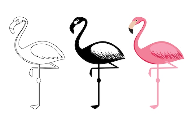 Umriss und silhouetten flamingovektor lokalisiert auf weißem hintergrund