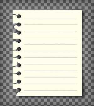 Unbelegte gezeichnete anmerkungsbuchseite mit heftigem rand