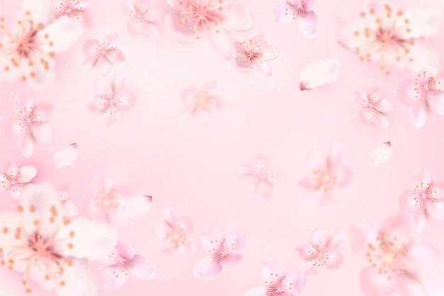 Unfokussierter hintergrund mit kirschblüte