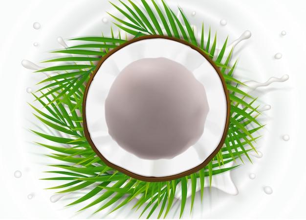 Unterbrochene kokosnuss im milchspritzen
