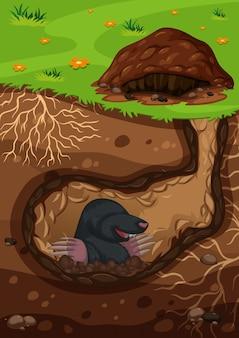 Unterirdische mole in einem tunnel