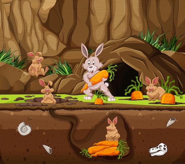 Unterirdischer tierbau mit kaninchenfamilie