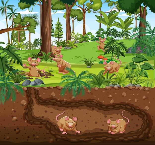 Unterirdischer tierbau mit rattenfamilie