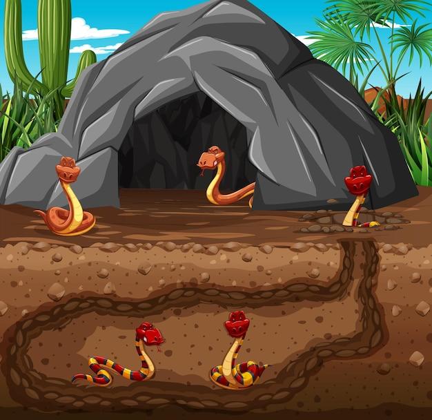 Unterirdischer tierbau mit schlangenfamilie