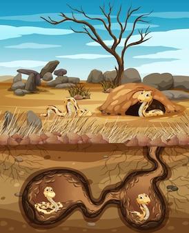 Unterirdisches tierloch mit vielen schlangen