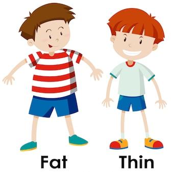 Unterschiede zwischen fett und ding