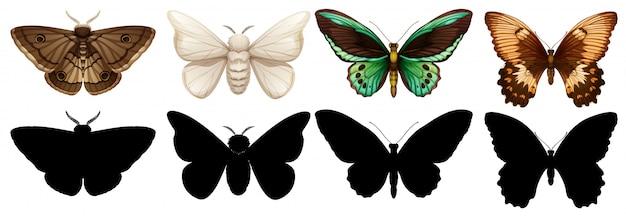 Unterschiedlicher farben- und schattenbildschmetterling